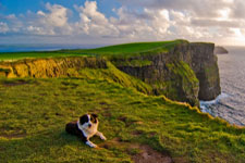 Bed and Breakfasts Doolin