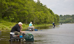 Search for an anglers welcome bed and breakfast