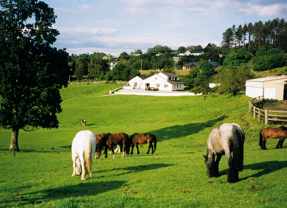 MUCKROSS RIDING STABLES
