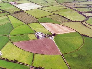 THE RING FARMHOUSE