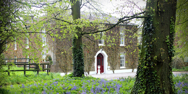February B&B guest reviews - book Bansha House b&b