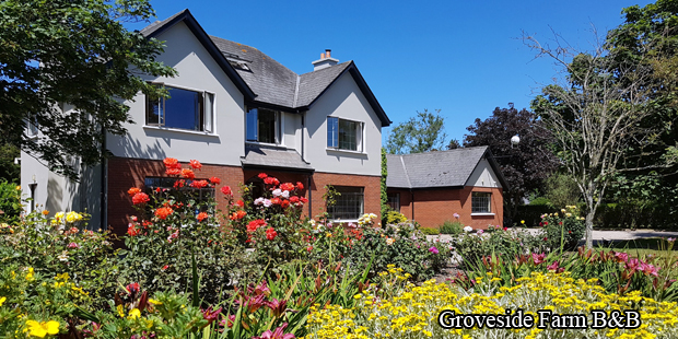 May B&B guest reviews - Groveside Farm B&B