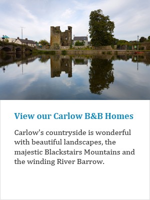 View our Carlow B&Bs on Ireland's Ancient Eas