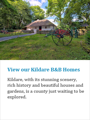 View our Kildare B&Bs on Ireland's Ancient Eas