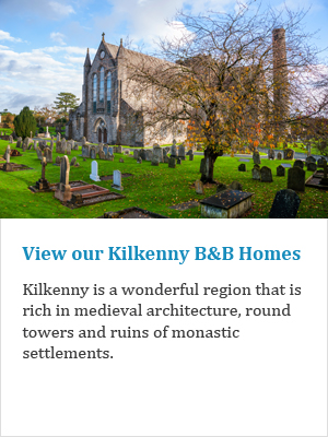 View our Kilkenny B&Bs on Ireland's Ancient Eas