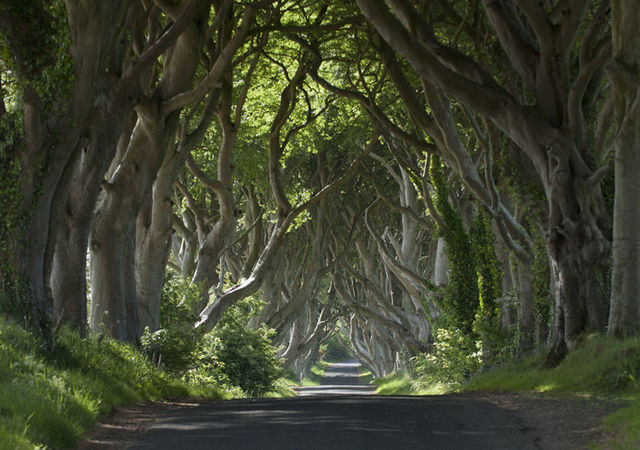Game of Thrones Locations in Northern Ireland