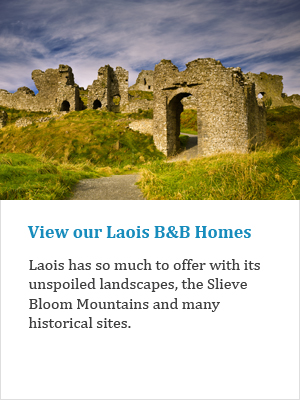 View our Laois B&Bs on Ireland's Ancient Eas