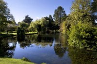 Search for B&B accommodation near the Japanese Gardens Kildare